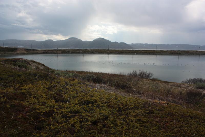 Озеро Могильное, Кильдин